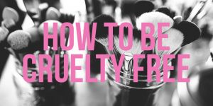 How to live a cruelty-free life… well, how to try at least!